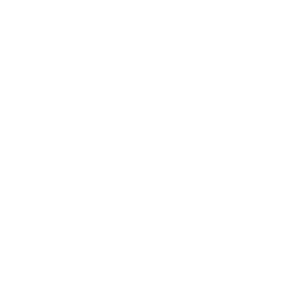 Logo Idea Money