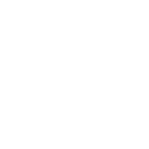 Logo Sales Group